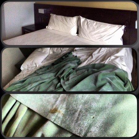 """Novotel Florianopolis : Coberta """"nojenta"""" que estava camuflada entre dois lençóis brancos."""