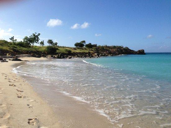 Sugar Ridge: The Nest beach