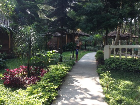 Thekkady - Woods n Spice, A Sterling Holidays Resort: cottages