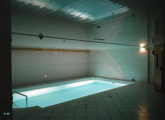 Hotel De Hoeve van Nunspeet: Het zwembad .