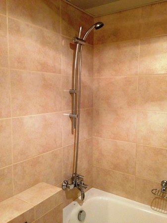 Premier Hotel Rus: シャワーの出も湯温も十分でした