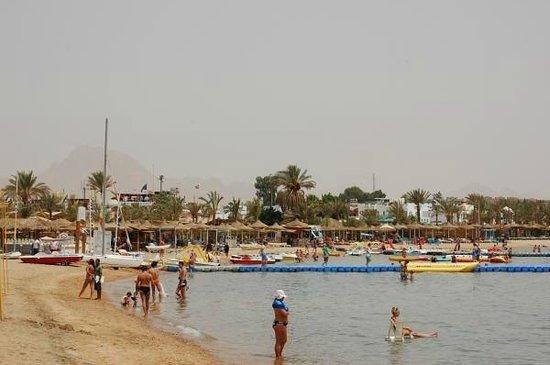Helnan Marina Sharm : Пляж