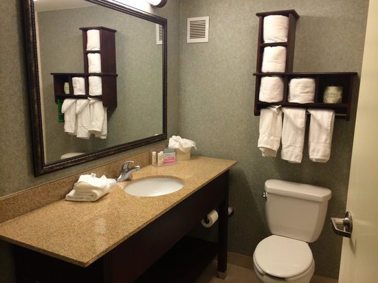 Hampton Inn Perimeter Center: bathroom