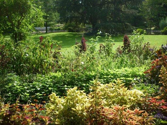 Palmengarten und Botanischer Garten: Palmengarten