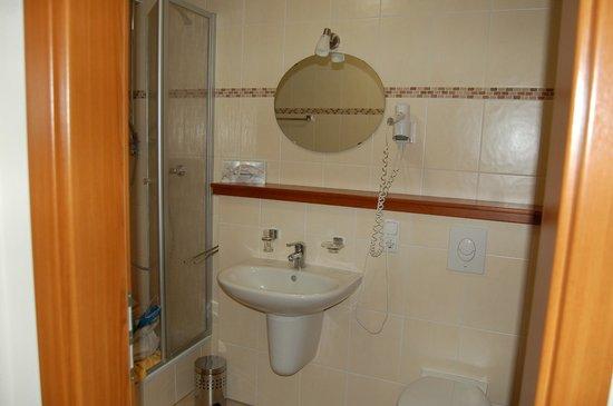 Am Eifelsteig Spa & Wellness Hotel: Badezimmer (am Tag des Auszugs)
