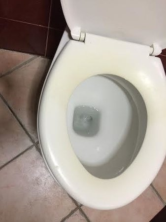 The Holyrood Hotel: The stained toilet seat