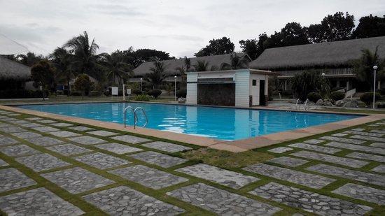 Bohol Beach Club : pool view