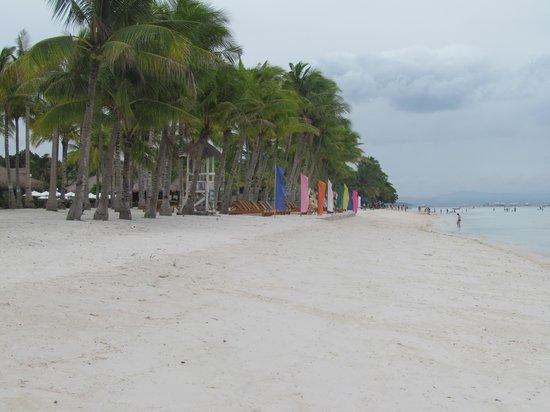 Bohol Beach Club : white beach