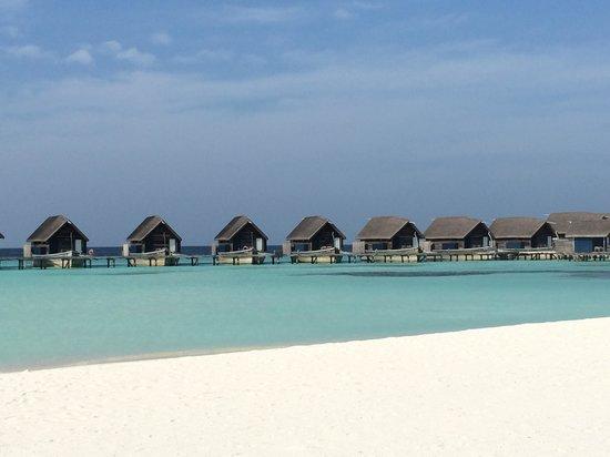 Cocoa Island by COMO: Overwater villas