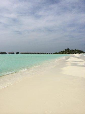 Cocoa Island by COMO: Lingua di sabbia