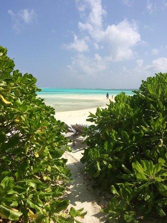 Fun Island Resort: La parte di spiaggia più bella, la mattina