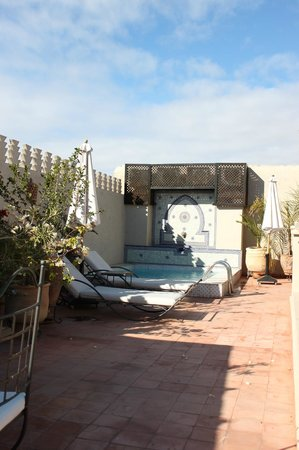 Riad le Clos des Arts: The rooftop plunge pool. About 3-4 times your average bathtub, for plunging to escape the heat o