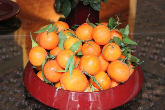 Riad le Clos des Arts: In the courtyard, an abundunce of oranges. They were delicious.