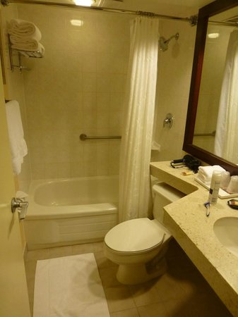 Sheraton Toronto Airport Hotel & Conference Centre : Bathroom