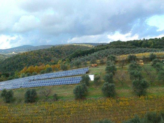 Agriturismo Tenuta Cantagallo: Fotovoltaico