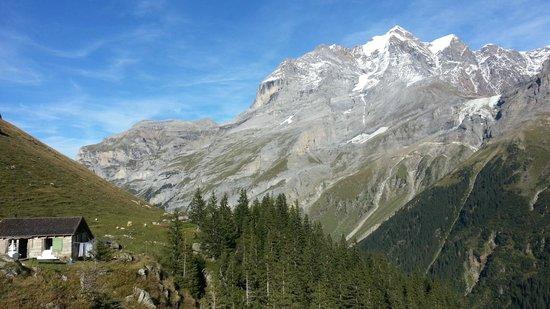 Berggasthaus Obersteinberg: Oberstenberg-Mtn Views