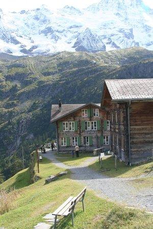 Berggasthaus Obersteinberg: Oberstenberg-Main Lodge left, Annex on right