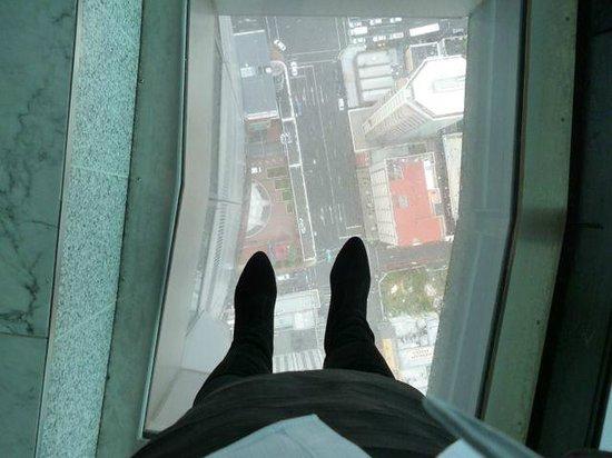 Sky Tower : парю в воздухе ,еще можно быдо лечь