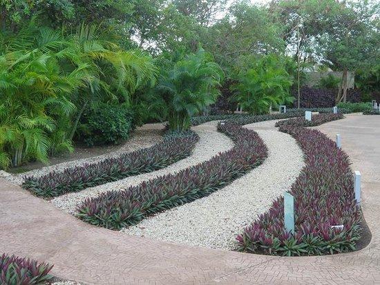 Rosewood Mayakobá: Property shot / landscaping