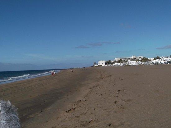 Aparthotel Costa Mar: beach