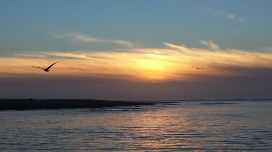 Tidal Raves : sunset view..comes with birds and whales spouts!.  enchanting lovely place