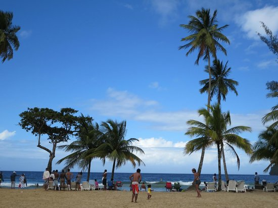 Maracas Bay: Palms on the beach