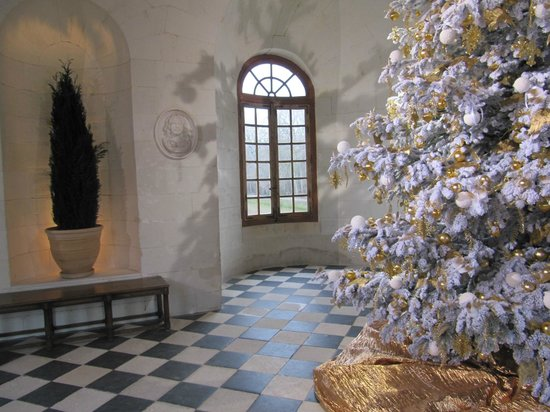 Schloss Chenonceau: замок