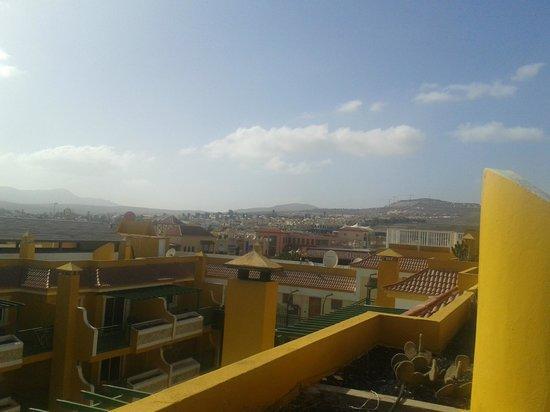 Caleta Garden : view form the roof terrace