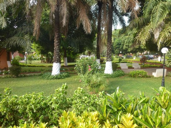 Azalai 24 de Setembro: The garden