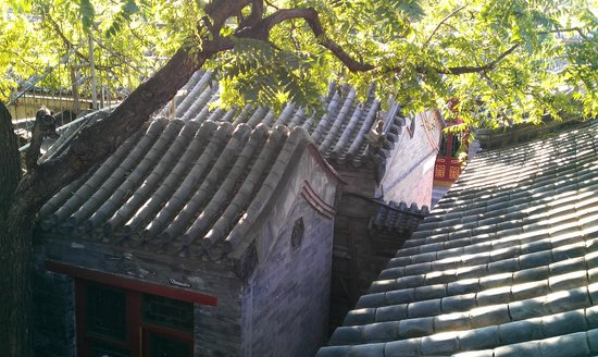 Fly by Knight Courtyard Beijing: 屋頂風景