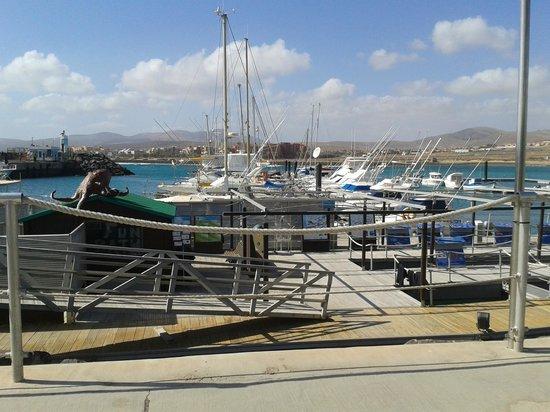 Caleta Garden : the harbour