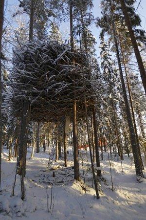 Harads, Schweden: The Birds Nest