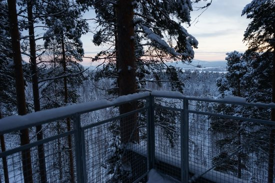 Treehotel: View from balcony of the Cabin