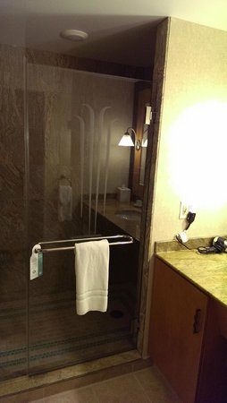 Seneca Niagara Resort & Casino : Shower Area