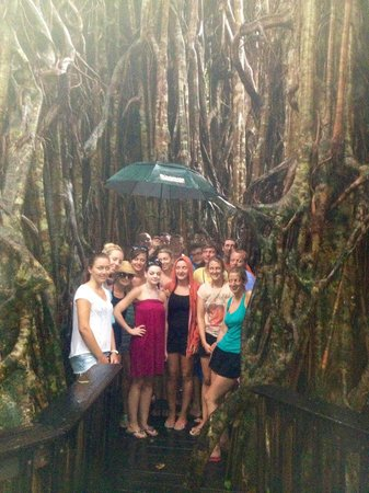 Barefoot Tours : Group