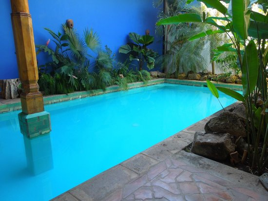 Miss Margrit's Guest House: The pool was inviting day and night