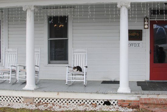 The Inn at Mountain Quest: front porch and friendly kitties