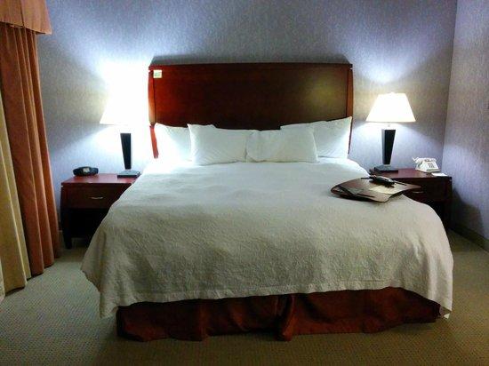 Hampton Inn & Suites Indianapolis/Brownsburg: Bed