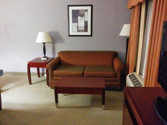 Hampton Inn & Suites Indianapolis/Brownsburg : Sitting Area