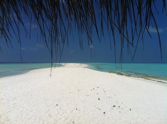 Kuramathi Island Resort: langue de sable au bout de l'ile