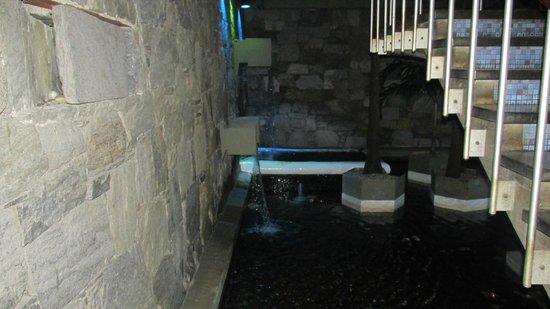 Hotel Venetur Alba Caracas: fuente