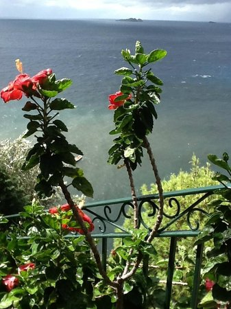Il San Pietro di Positano: The flowers