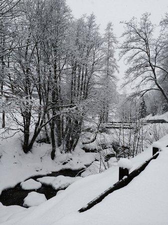 L'Ancien Paquier: Neve