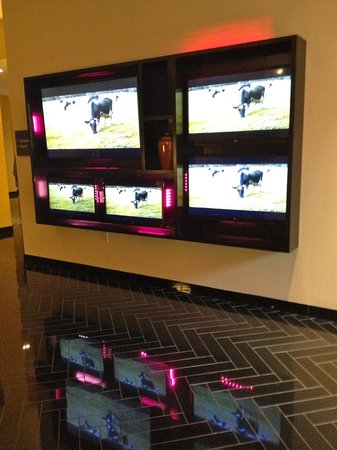 Hotel Derek Houston Galleria : Love the cows