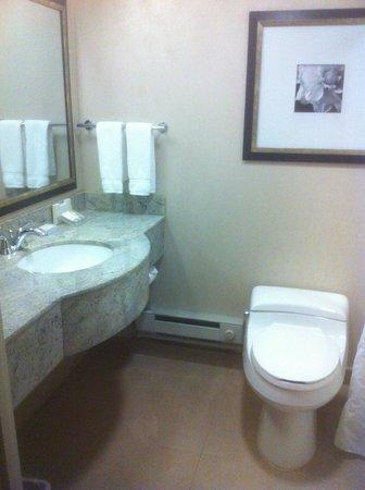 Hilton Garden Inn New York/West 35th Street: Bathroom