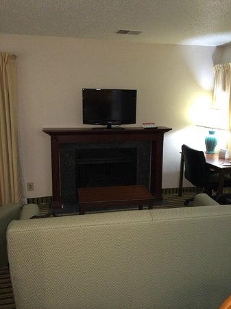 Hawthorn Suites by Wyndham Troy MI: TV was a little small to see from the bed