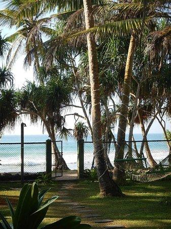 Villa Tissa Beach Resort: The Garden onto the beach