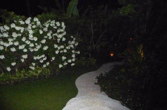 Sandat Glamping Tents: Walkway