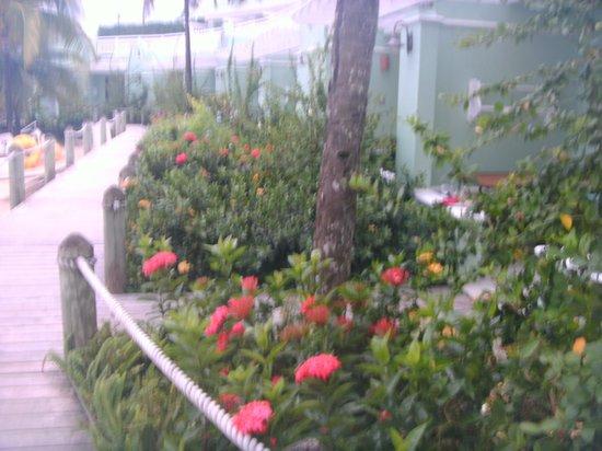 Beaches Ocho Rios Resort & Golf Club : Walk way to watersports