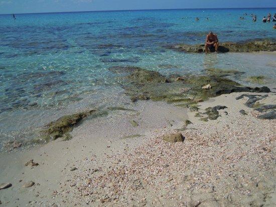 Hotel Riu La Mola : spiaggia hotel